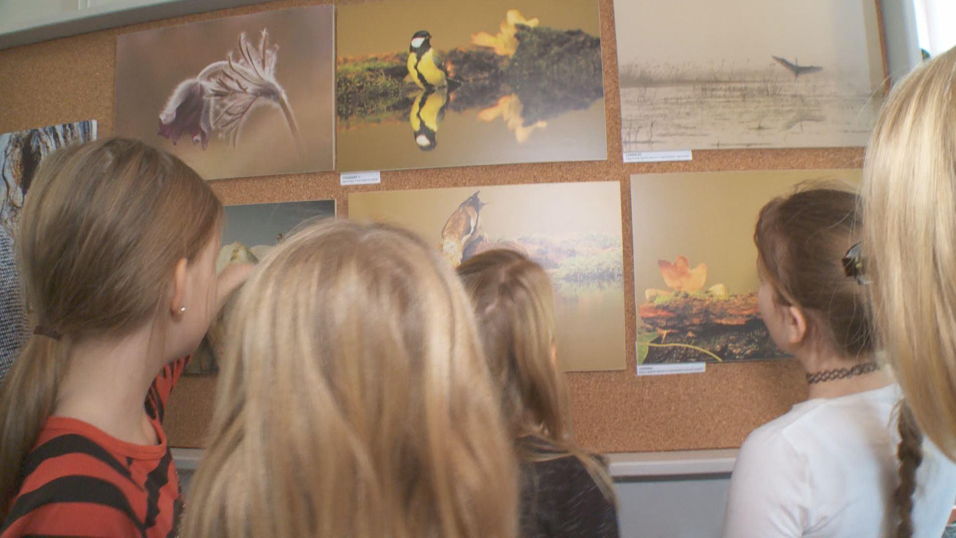febc0b125a ... első nagyszabású kiállítása nem is lehetett volna más, mint a  természetnek a megörökítése - mondta Suhai Zsolt, Palini Általános Iskola  igazgatója.