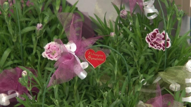 1b2cb57bf4 Virágot, kedvességet, figyelmességet és vért is adtak a férfiak a nőnapon |  Nagykanizsa Online