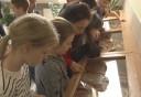 Népi iparművész házaspár alkotásaiból nyílt kiállítás a Rozgonyi-iskolában
