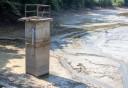 Több száz milliós kárt okozott a július 25-i árvíz Galambokon