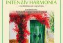 Intenzív harmónia