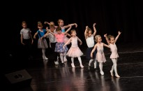 A tánc napján, fotó: Gergely Szilárd