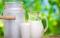 Évente 116 millió tonna tej és tejtermék vész kárba világszerte