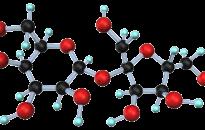 A baktériumok fertőzőképességét meggátoló szénhidrátokat állítottak elő debreceni kutatók