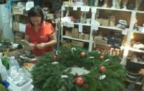 A mikulásvirág és a karácsonyi kaktusz december virágsztárja