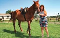 A lovagoltatástól a marhatenyésztésig: egy családi gazdaság sikertörténete