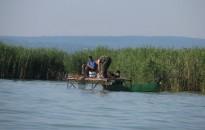 Nem emelkedik a balatoni horgászjegyek ára, néhány pontban módosul a helyi horgászrend