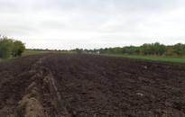 Agrárkamara: a földforgalmi törvény módosításával a magyar gazdáknál marad a termőföld