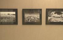 Gyertyánági István fotóiból nyílt kiállítás a Péterfy-iskolában