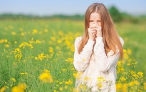 Allergológus: országos allergia rizikótérképre lenne szükség
