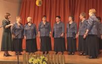 Fennállásának 15. évfordulóját ünnepelte a Szepetneki Nefelejcs Egyesület