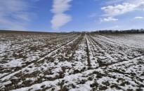Meteorológiai szolgálat: melegebb volt a szokásosnál a tél