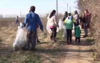 Kutatás: egyre többen önkénteskednek
