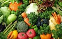 HENT: a magyar fogyasztók 60%-a még nem is hallott a hamisított növényvédő szerekről