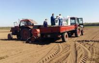 A tavaszi árpa csaknem felét elvetették Zala megyében