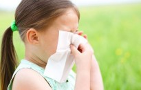 A pázsitfűfélék pollenje is tüneteket okozhat