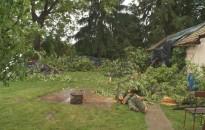 Több helyen is gondot okozott a viharos szél