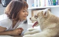 Az ember génjeitől is függ, hogy kutyatulajdonos lesz-e