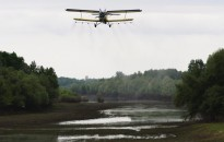Hőség - OKF: átmenetileg szünetel a légi szúnyogirtás