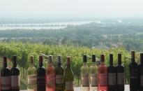 Zalai borünnepet tartanak szeptemberben a Kányaváry Borbirtokon
