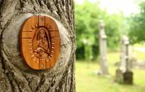 Sebeinkre gyógyír Mária – búcsú a látóhegyi kápolnánál