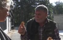 Kanizsai szakember kapta idén a Kaán Károly-emlékérmet