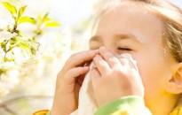 Allergológus: egyre kisebb a pollenek szerepe az allergiában