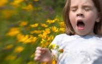 Viharos időben fokozódhatnak az allergiások tünetei