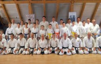 Nemzetközi karate tábor Balatonfenyvesen