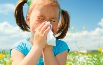 Tisztifőorvos: emelkedik a parlagfű pollenkoncentrációja