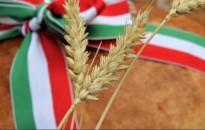 Néprajzkutató: a paraszti kultúrában a kenyeret és a búzát nagy tisztelet övezte