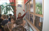 Megnyílt az Ezer színű természet című kiállítás a Palini-iskolában