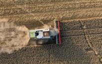 Jó termésre számítanak a gazdák Zalában