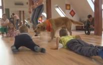 Terápiás kutyák társaságában játszottak
