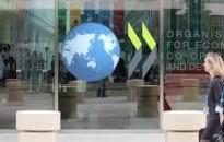 Az OECD javította az idei és a jövő évi magyar GDP-növekedési prognózisát