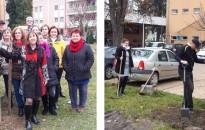 Fákat ültettek a Lenti Járásbíróság dolgozói