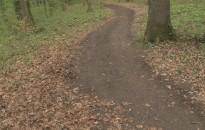 Erdőlátogatási tilalom lesz vasárnap a Csónakázó-tó feletti erdőben