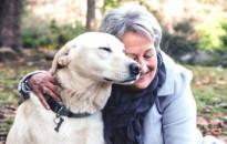 A kutyatartás csökkentheti a halálozás kockázatát egy svéd kutatás szerint