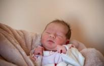 A város és az ország első babáját is köszöntötték a Kanizsai Dorottya Kórházban