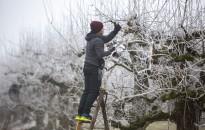 A hét képe – Metsző hidegben…