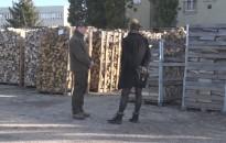 Tűzifa helyzet Zalában