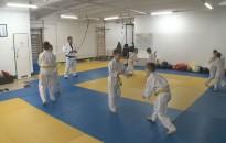 Két ezüstérmet szerzett a Nagykanizsa Judo Klub