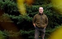 Erdőmesék