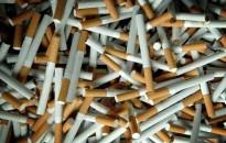 Harley bevetésen – Adózatlan cigarettát szagolt ki a navosok kutyája