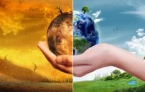 Összehangolt tervvel készül a klímaváltozás hatásainak csökkentésére a Magyar Mérnöki Kamara
