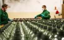 Kéz- és felületfertőtlenítő gyárrá állította át egyik üzemét a Mol Almásfüzitőn, hogy segítse a koronavírus elleni védekezést