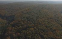 Szünetelnek az erdei vasutak, szálláshelyek, erdészeti erdei iskolák is