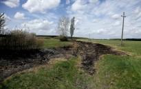 A költési időszakban végzett fa- és bokroskivágások természetvédelmi kárt okoznak