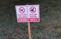 A hét képe: Üzenet a kutyusoknak…