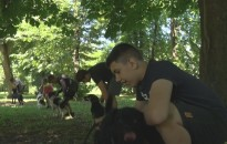 Idén sem maradt el az ifjú állatvédők napközis tábora